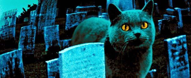 cementerio-mascotas-haldon-hills